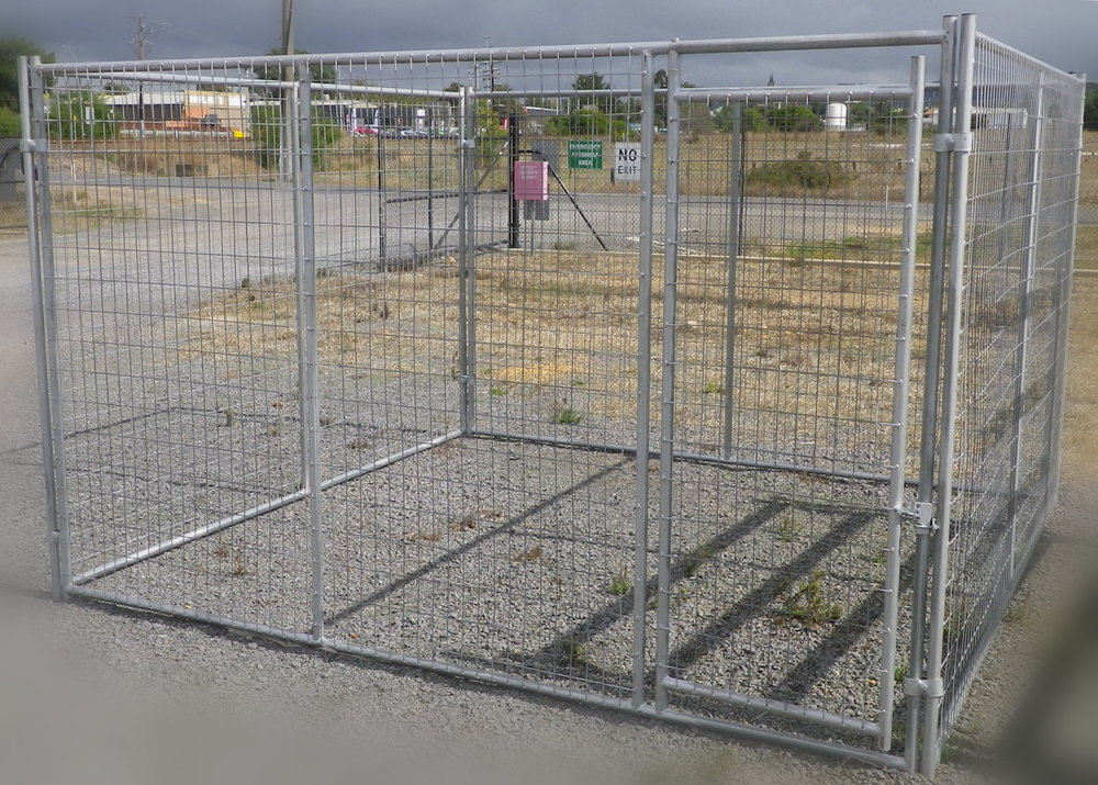 Dog Yard 1.jpg