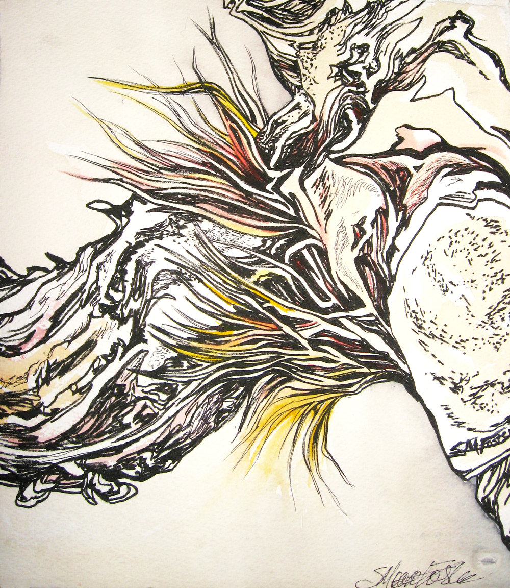 Sharon Moore-Foster, Antler I Stilled Life Series, 27 x 27 inches, Ink and Watercolour