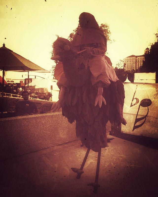 Bird Passenger? #artsfestival #utah