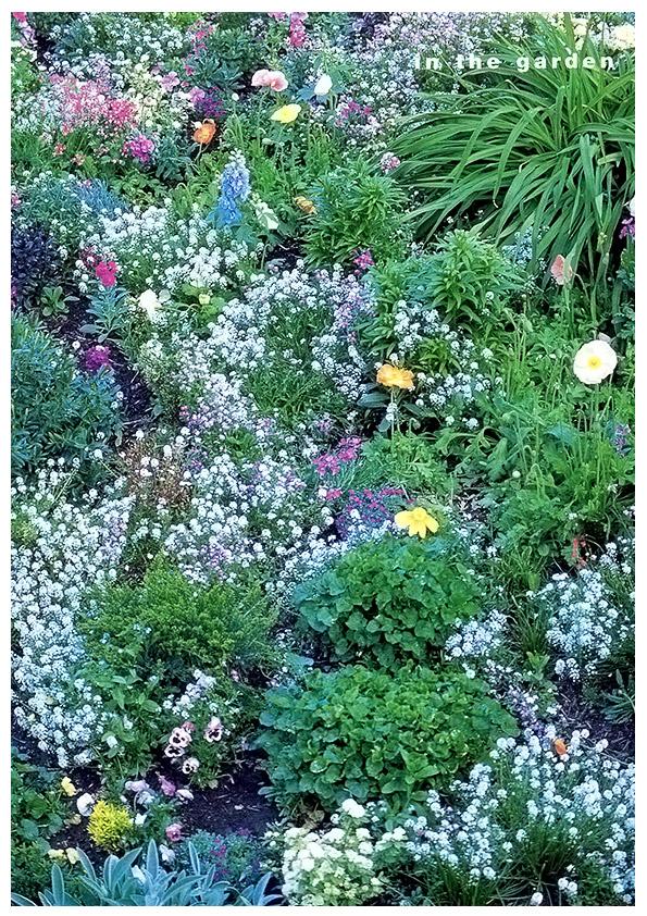 Garden Tapestry_Pg1 Garden Tapestry_Pg2 ...