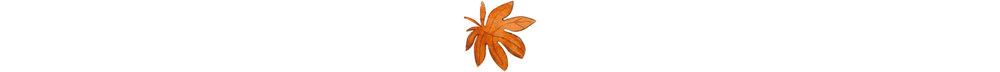 ceramica - Sabato 21 Ottobre | 15:30 – 17:00