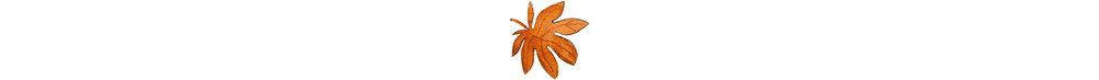 FLORAL DESIGN - Sabato 21 Ottobre | 10:00 –12:00