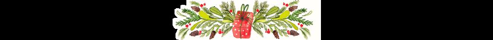 pacchetto-regalo.png