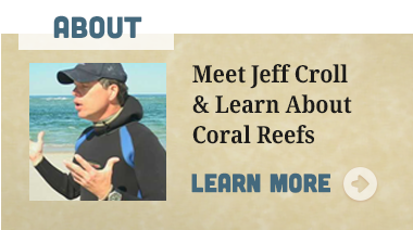 meet-jeff-croll.png