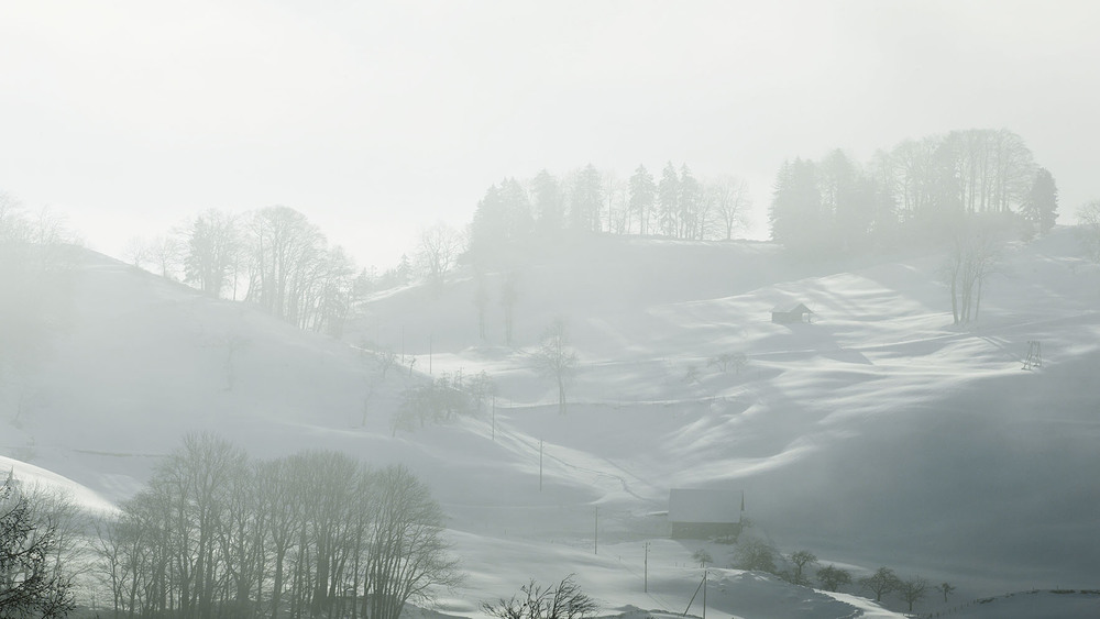 buergenstock_snow.jpg