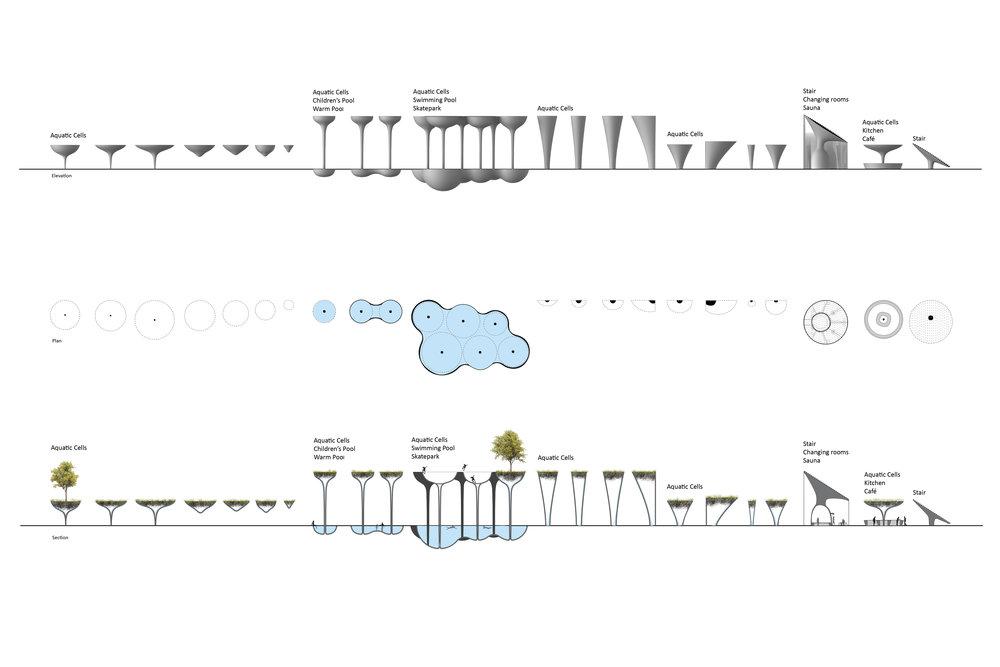 taxonomy2.jpg
