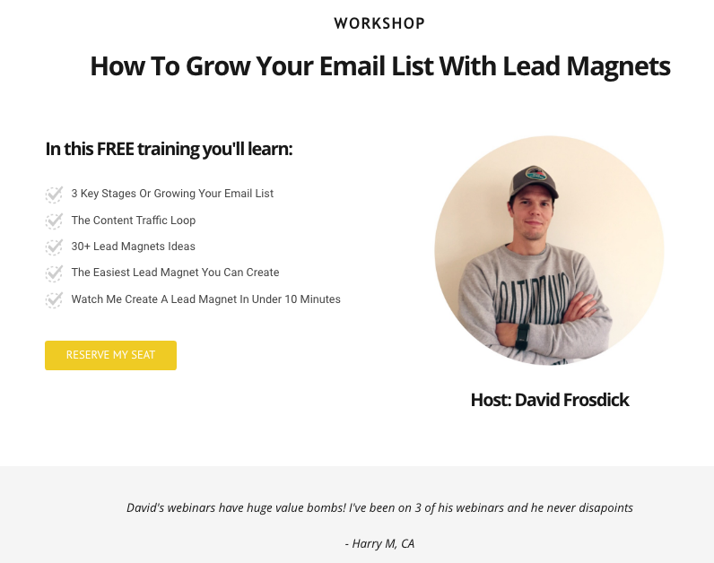 FREE_LIVE_MASTERCLASS__Get_30__Lead_Magnet_Ideas_—_David_Frosdick_1.png