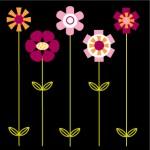 tc-floral-babies-1-150x150.jpg