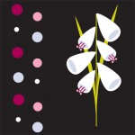 tc-floral-babies-6-150x150.jpg