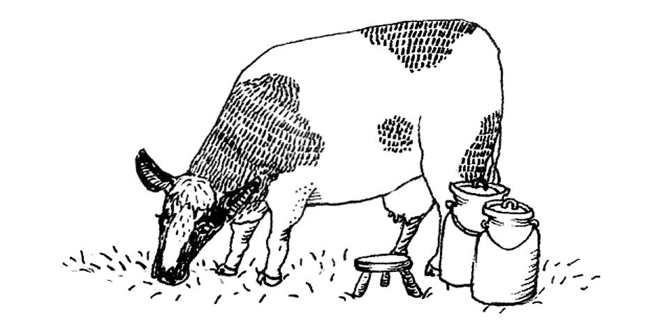 cow final.jpg