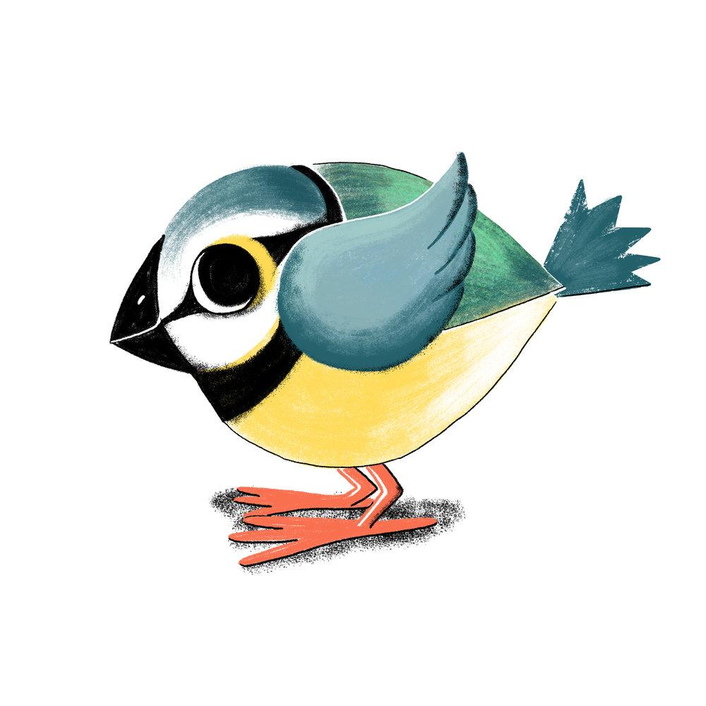 bird copy.jpg