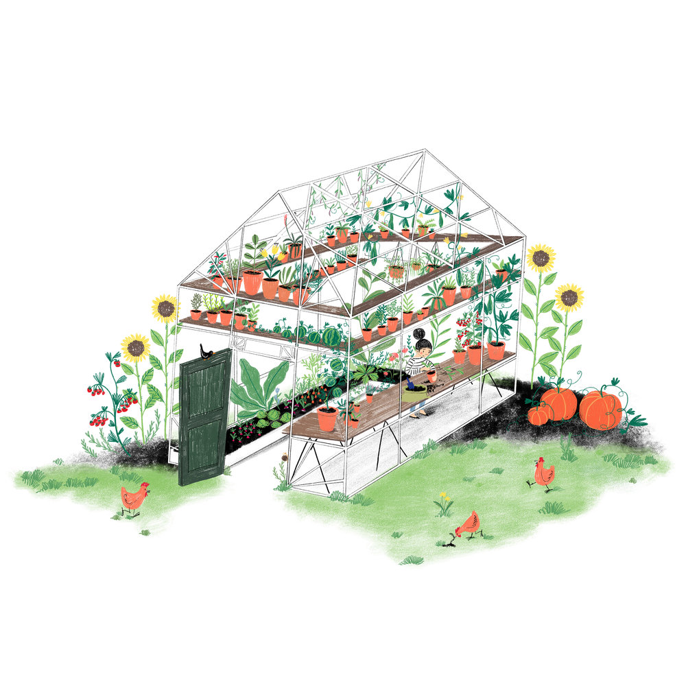 greenhouse copy.jpg