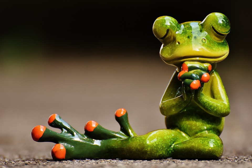 frog-1672865_960_720.jpg