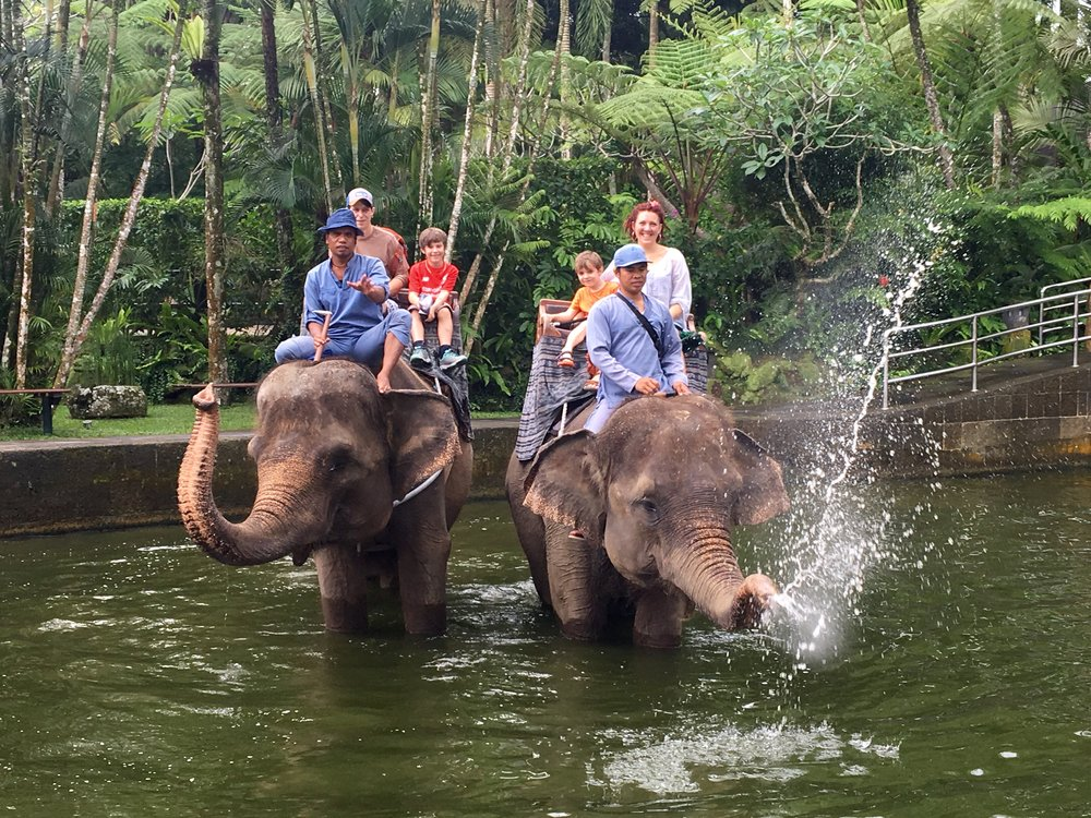 Lovely elephant ride! Best day ever.