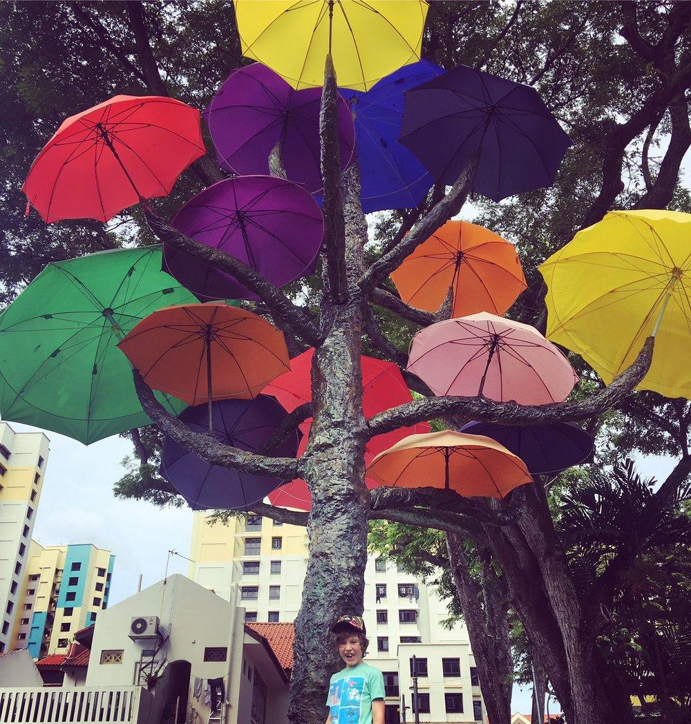 We found an installation just off of Serangoon Rd- beautiful umbrellas.