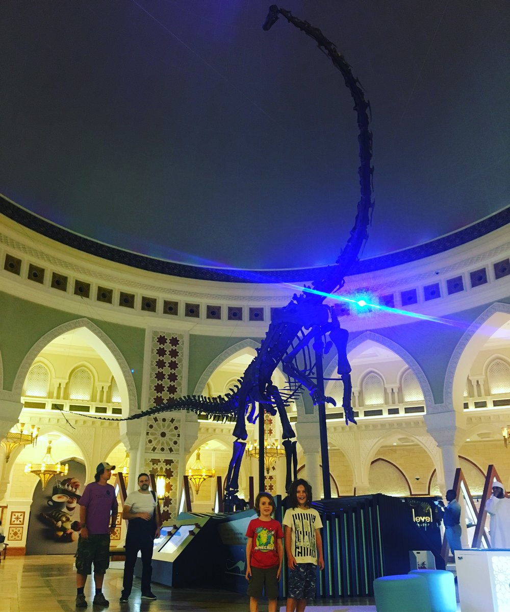 A Diplodocus skeleton, just happened to be round the corner in Dubai Mall.