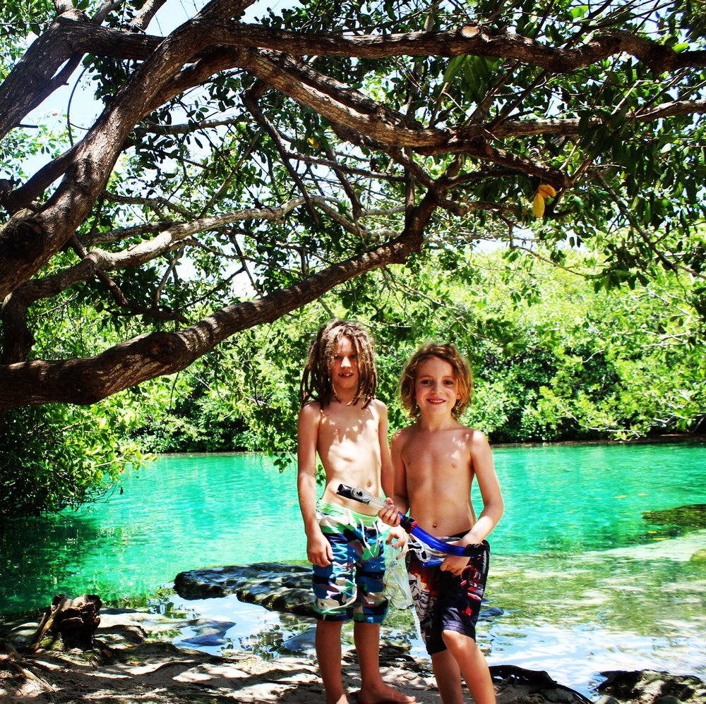 Casa Cenote, Tulum. The water was the brightest and clearest I have ever seen.