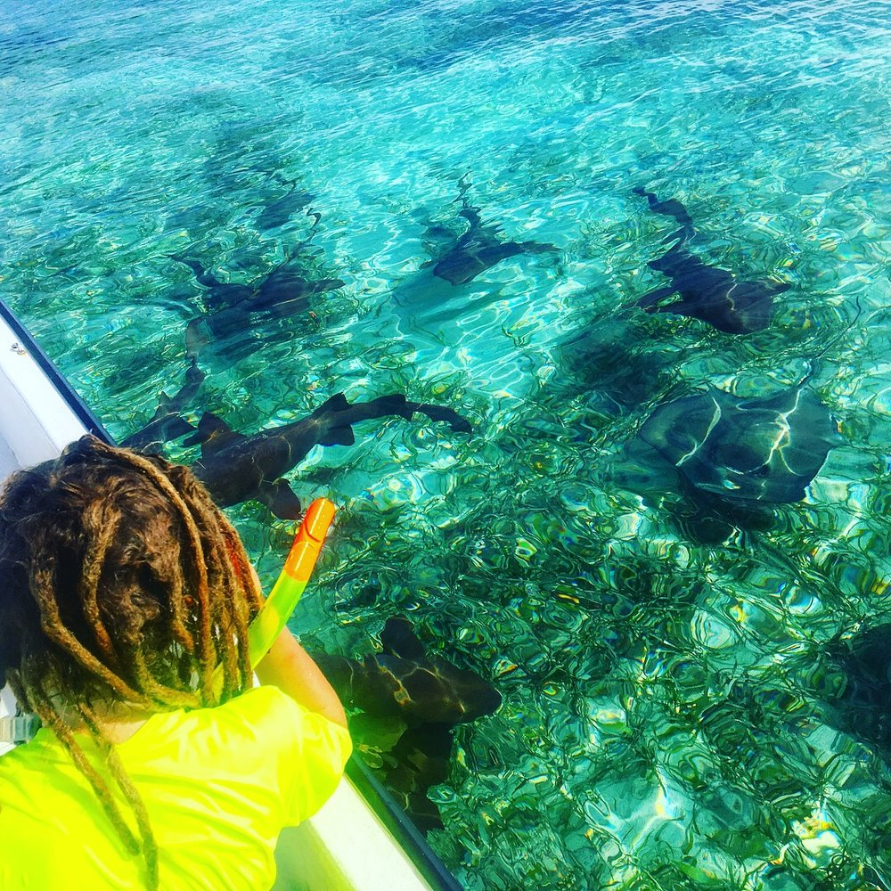 The Eldest, watching the Stingrays and Nurse sharks from the snorkelling boat.