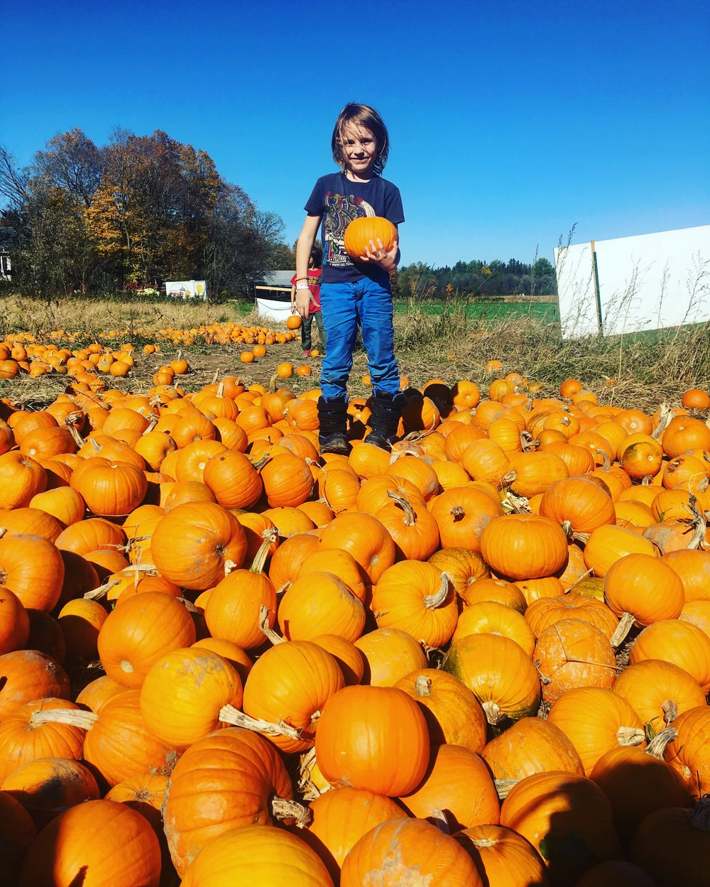 A day at the pumpkin patch.