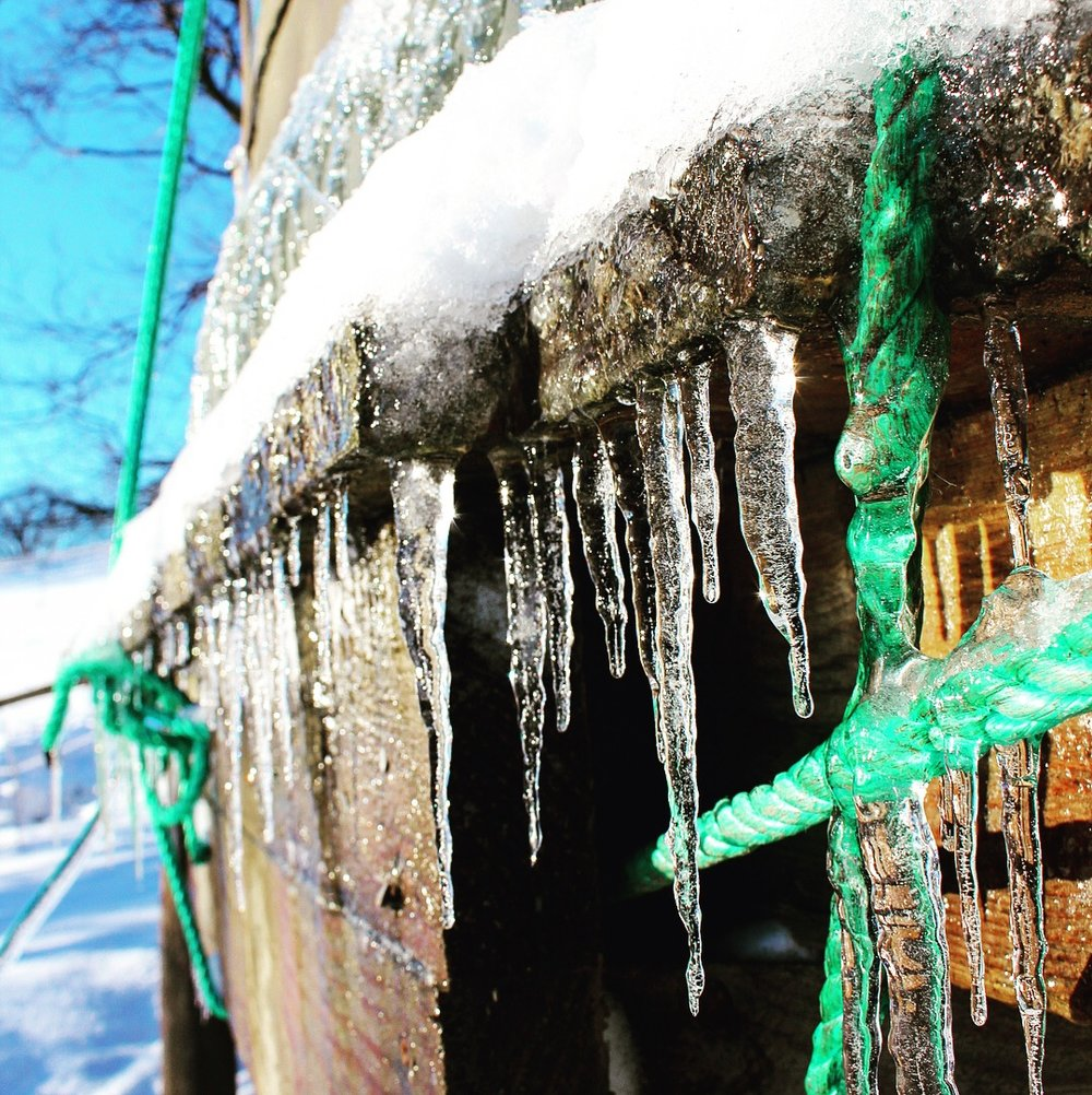 The day after we moved in, our gift from the weather gods were these beautiful icicles.