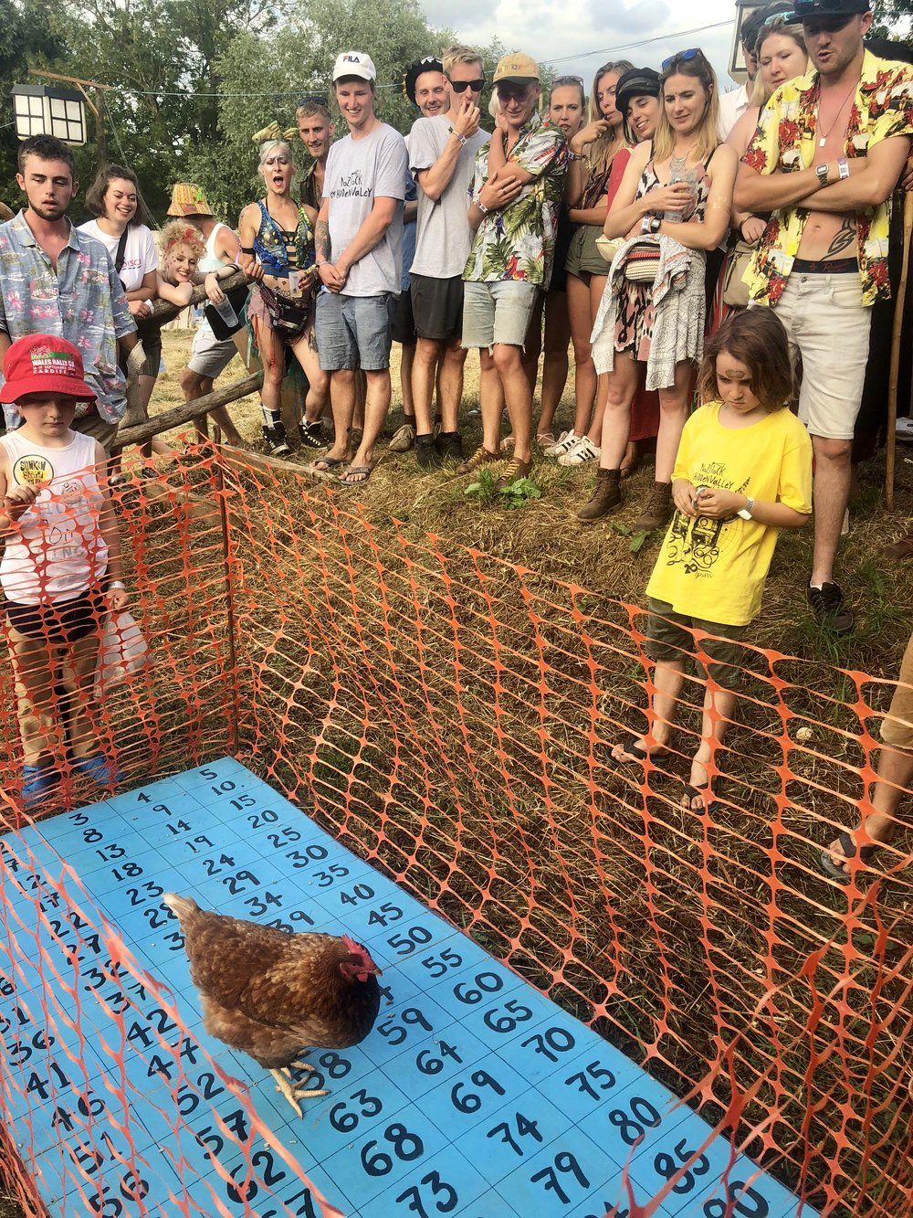 Chicken Shit Bingo: You buy a number, if the chicken shits on your number you win £50 and the rest of the money goes to charity. It's tense, it's quirky and it's all to play for.