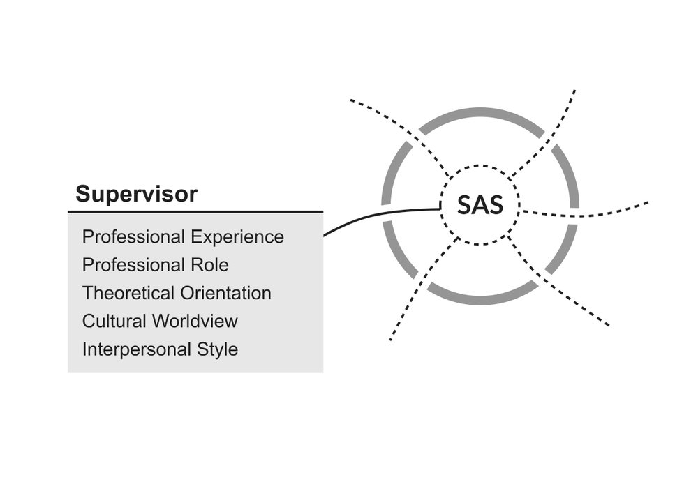 SAS-fig12.jpg