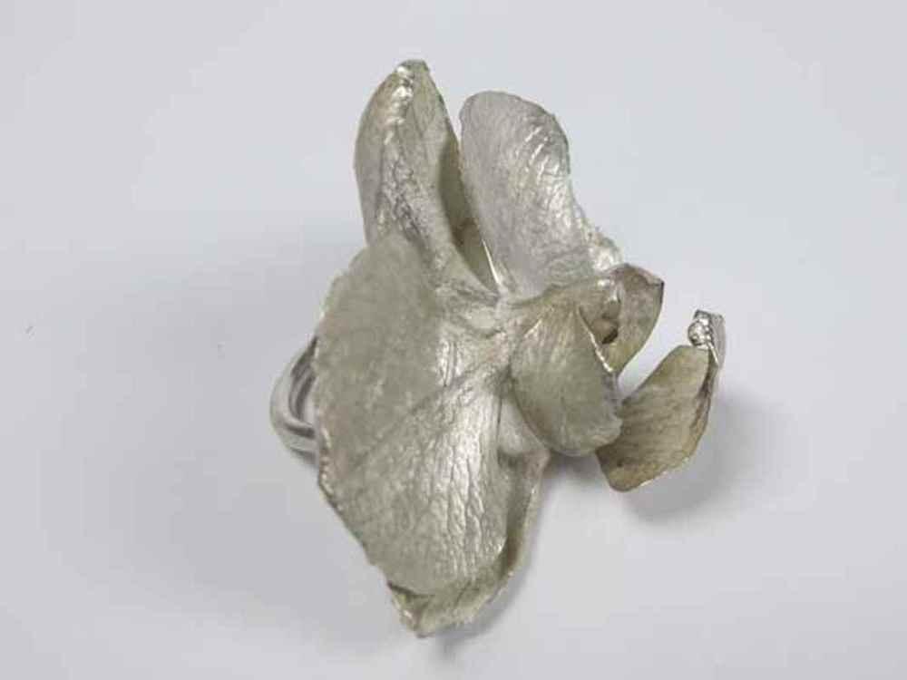 Phalaenopsis ring silver NBR015.jpg