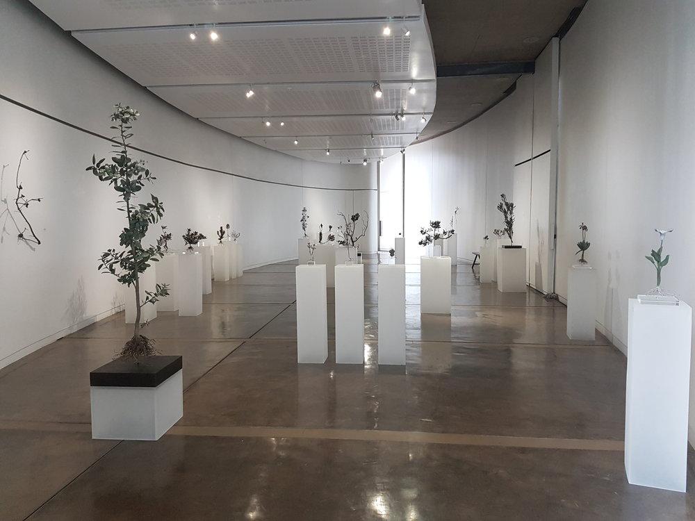 Circa Gallery sculpture display .jpg