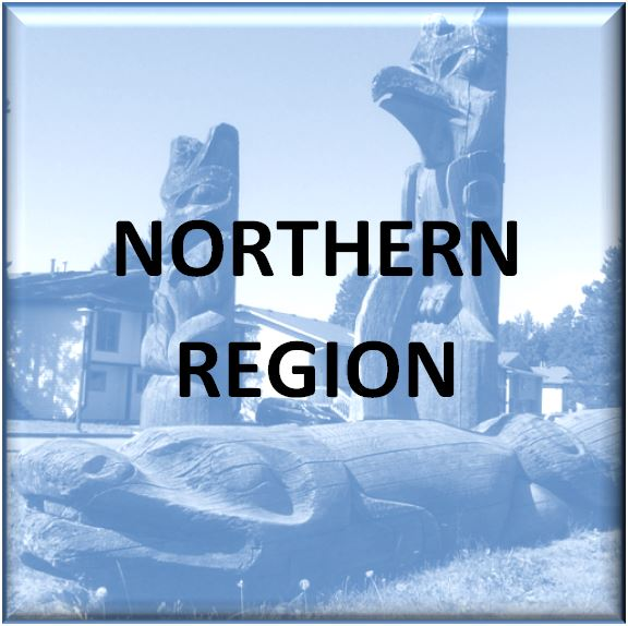 Northern-button.JPG