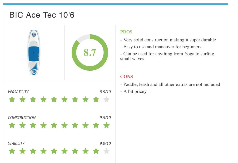 BIC Ace Tec 10.jpeg