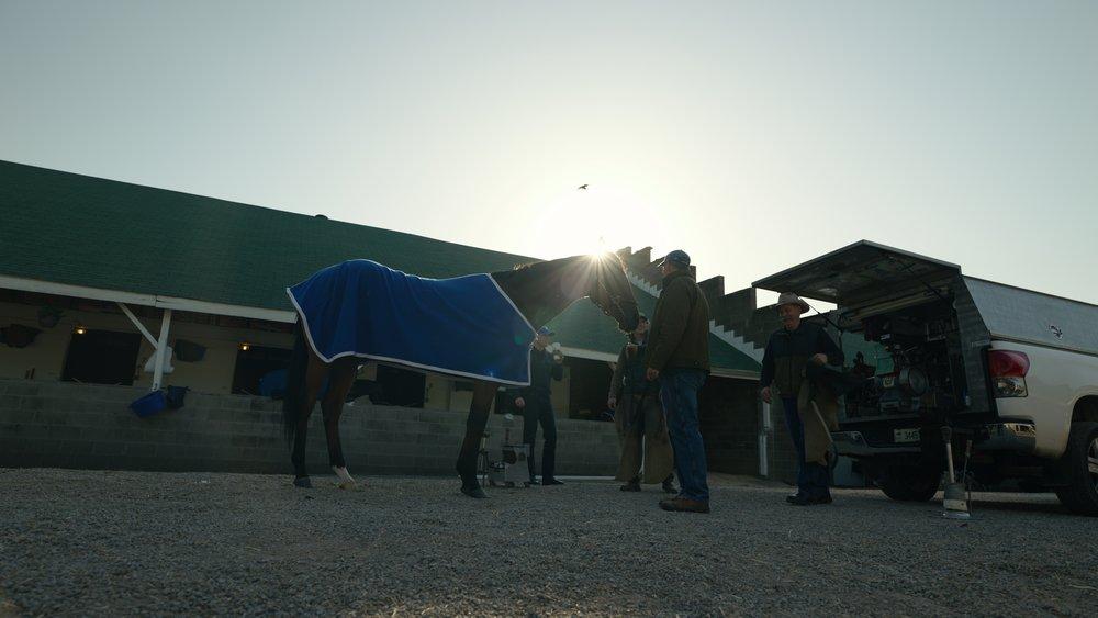 horses9_1.40.1.jpg