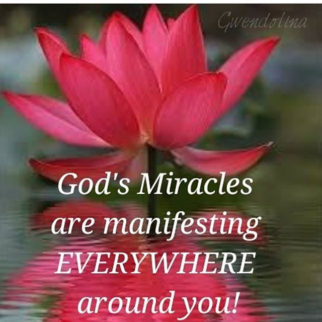 "Glory to God, each day with Jesus is a miracle-manifestimg day! 📖""The Lord is the One you praise; He is your God, who performed for you those great and awesome wonders you saw with your own eyes!"" Deuteronomy 10:21"