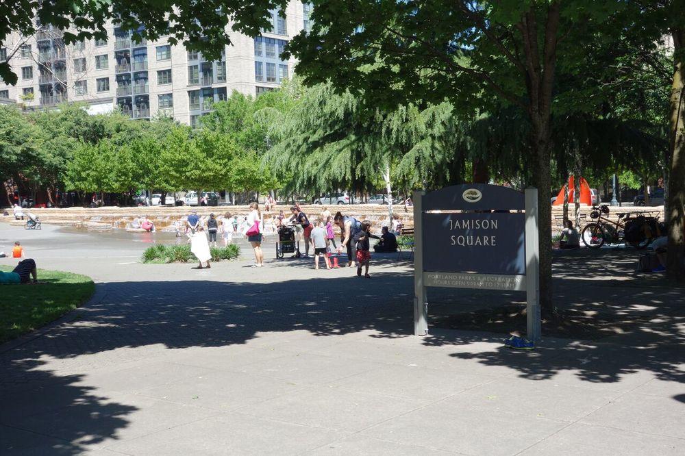 Jamison Square.jpeg