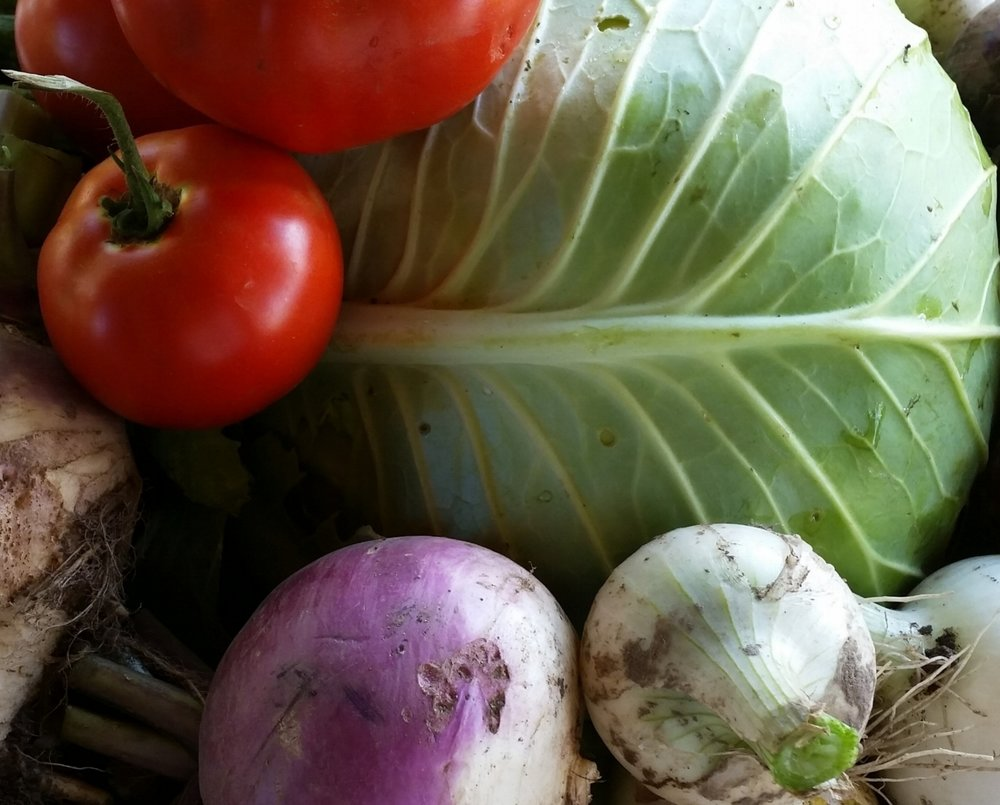 CSA | Farm2U - Delivered every week.