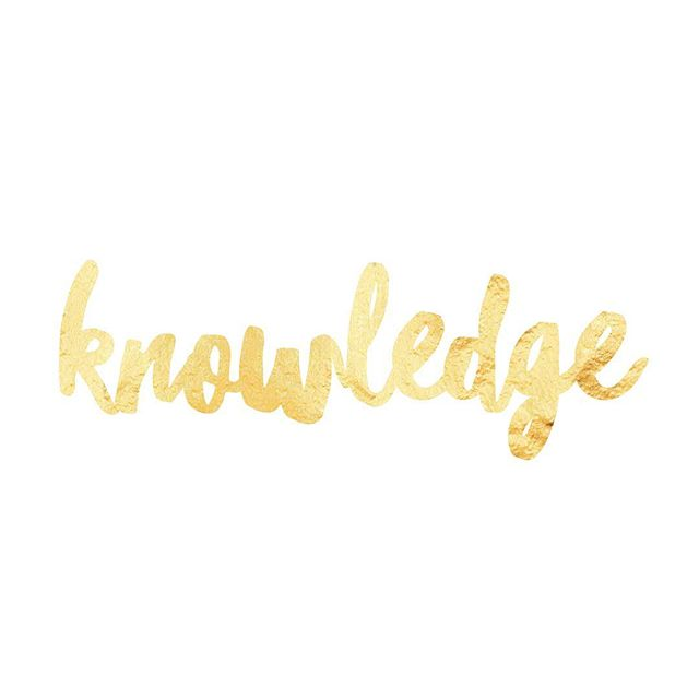 knowledge○◌ #transcendwhereyouare  VEDA means whole #knowledge or whole #truth. The #Veda is knowledge that can withstand a view from any angle and still be true. For this reason, the Veda is regarded as supreme knowledge. It has no author and can be universally applied by anyone in any era making it an #all-inclusive, timeless worldview.  The Veda is all about understanding your essence through direct experience, and we start by moving beyond the identity developed from busy, irrelevant thoughts. It's the first step in the process of #actualizing your #enlightenment.  To facilitate your complete #awakening, we turn to the Veda for a plethora of #wisdom pearls. It contains a vast record of higher consciousness experiences as well as the practical arts and sciences of #Ayurvedic medicine, yoga and meditation.  We are deeply fortunate to learn Vedic knowledge from a pure lineage of master teachers. They have given us a simple, yet powerful methodology to experientially understand our universality within our humanity.  The integration of these two aspects of life evolves like a dimmer switch - the light gradually gets brighter day-by-day. All we have to do is get to the chair twice a day and before you know it, every room you walk into lights up. By @themodernmind  #vedicmeditation #meditate #meditation #meditatedaily #meditateeveryday #meditateeverydamnday #mind #yoga #yogic #consciousness #consciousliving #deep