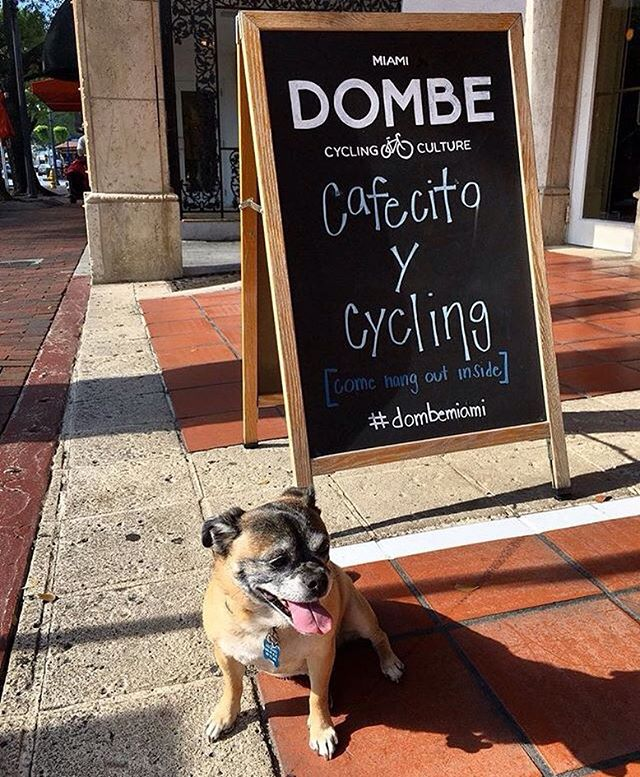 Showing some love to @dombecycling! ♥️ This Grove boutique clearly knows how to make cardio exciting. We love that they offer coffee to their local community. 🚴🏻‍♀️☕️🚴🏻‍♀️ 📸: @dombecycling