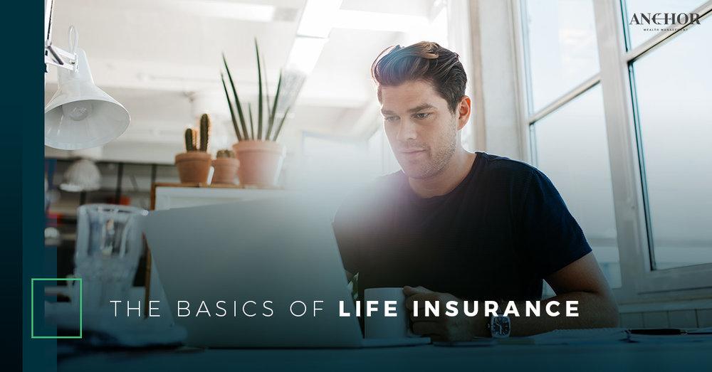 The Basics Of Life Insurance.jpg