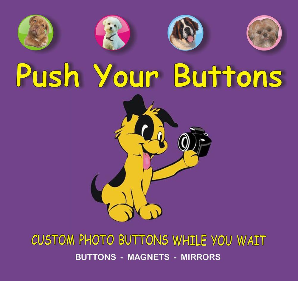 push buttons.jpg