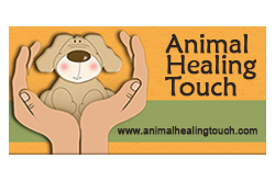 animal healing touch logo.png