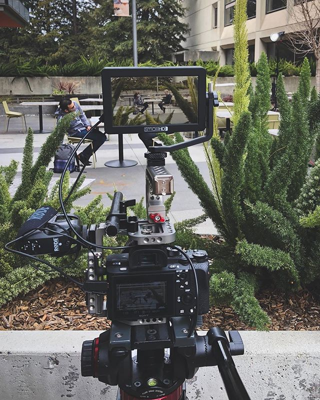 Filming for @bankofthewest with @leomarmoring!  First time using the @aputuretech 300d outside.  Finally some led lights that can be used outside! - - - #berkeley #bayarea #sf #mymikescamera #onset #onsetlife #createcommune #artofvisuals #yourschoolyourview #onlocation #behindthescenes #makingof #justgoshoot #aputure #sonyalpha #smallhd #manfrotto #ucberkeley #bankofthewest