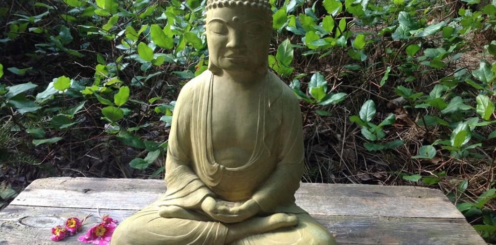 meditationweb-1010x500.jpg