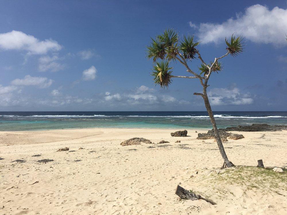 Dry Creek Beach