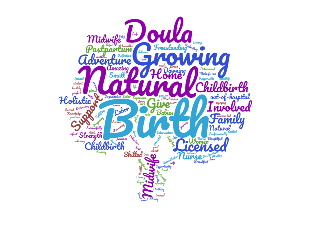 wordcloud (1).png