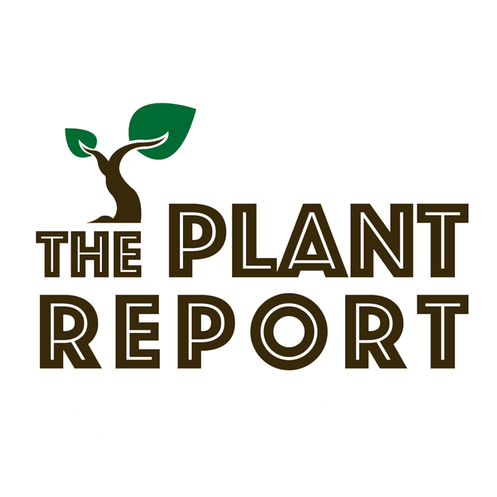plant-report.png