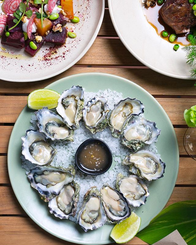 A squeeze of lime on your freshly shucked oysters 🌱  #thefernerymosman #greateatsco