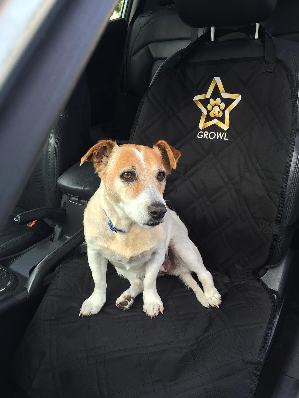 vip dog car seat cover