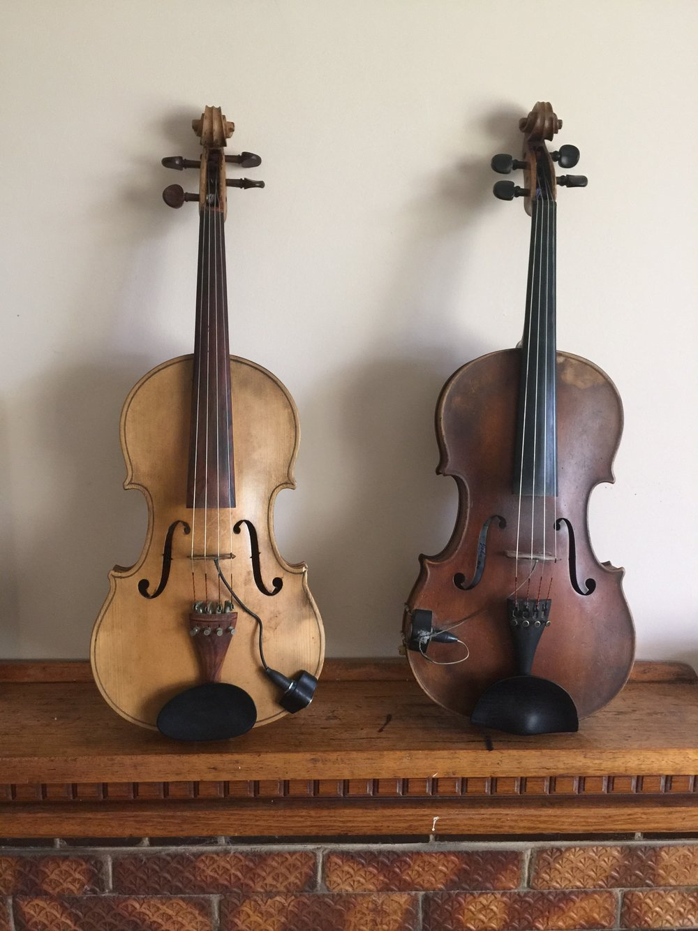 10. Lady Marmalade & Tiger I know it's daggy (refer to photo 3) but I named my violas Lady Marmalade and Tiger.  Lady Marmalade was my first viola, she cost about $100 but she means a lot more than that to me.