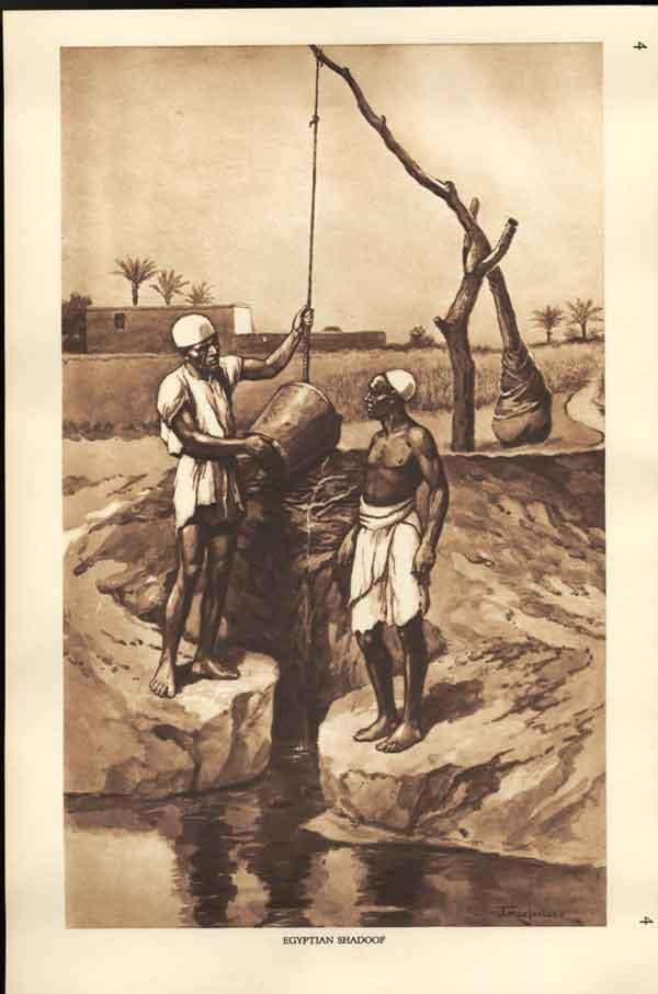 Egyptian Shadoof. Image courtesy of http://www.old-print.com/cgi-bin/item/A4701930004