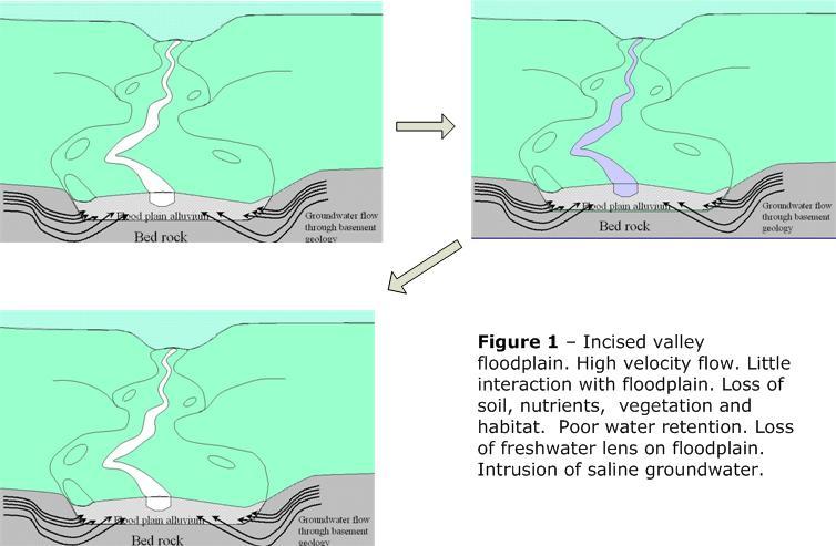 Incised valley flood plain. Image courtesy of http://www.nsfarming.com/andrews.htm