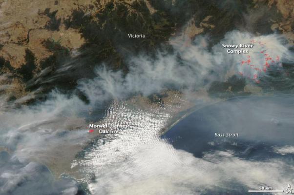 MODIS satellite image  of bushfire activity in South-east Australia on 11FEB2014.